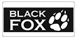 Ремонт смартфонов BlackFox | Гарантийный и платный ремонт